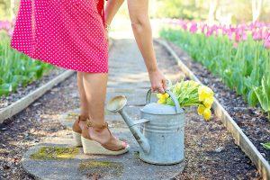 bienfaits du jardinage sur la santé